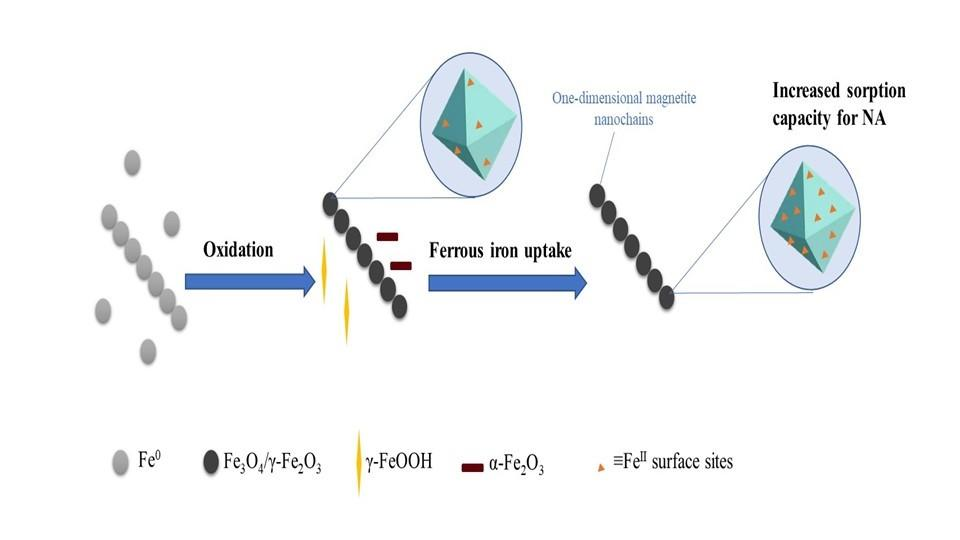 Adsorption capacity of the corrosion products of nanoscale zerovalent iron towards emerging contaminants