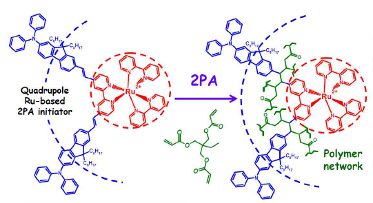 Quadrupole Ru-based complexes